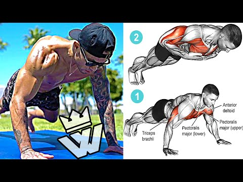 29 BODYWEIGHT EXERCISES that will increase your Body Strength