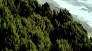 История Земли за 6 минут!
