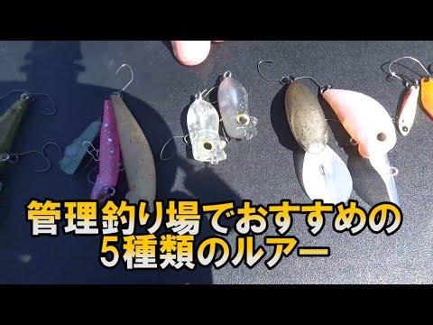 管理釣り場でおすすめのルアー5種類!!エリアトラウト