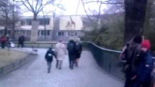 Noi, i ragazzi dello zoo di Berlino