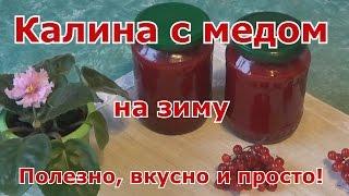 Протертая калина с медом на зиму  Очень полезно, вкусно и просто