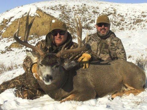Southern Alberta Precision Richard Mule Buck 2017
