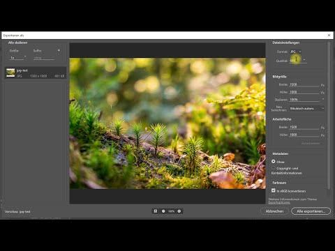 Bilder, Fotos, Grafiken, Logos, Icons usw. für Websites optimiert exportieren – Photoshop-Tutorial