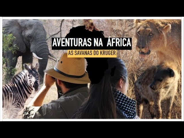 Nossa Aventura na África #2: As Savanas do Kruger