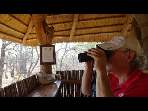 #30 What we learn about Best Wildlife Viewing Practices I African Tour 2016-2017