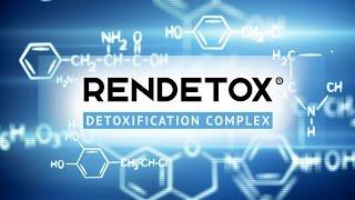 Что такое RENDETOX®, и как он работает?