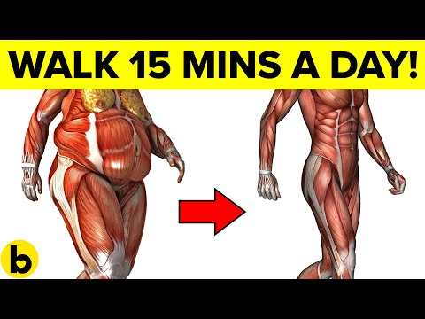 How Walking 15 Minutes Per Day Can Change Your Body