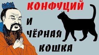 Конфуций и чёрная Кошка в тёмной комнате