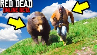 TAME A GRIZZLY BEAR in Red Dead Online! Taming Animals Glitch Red Dead Redemption 2 Funny Moments