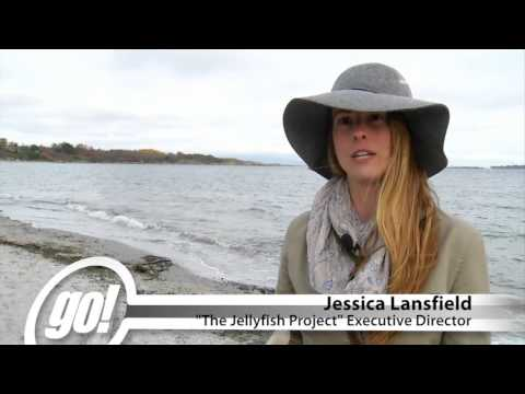 The Jellyfish Project - Shaw TV Victoria