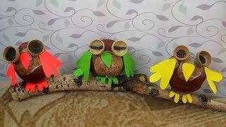 поделка СОВА из каштанов. Осенние поделки из природных материалов в детский сад и школу