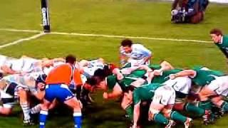 Ireland V Argentina Rugby International 2010
