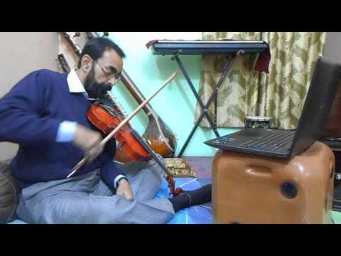 Violin Training Online Skype Lessons Beginners learn to play Violin Carnatic Music Guru Teachers