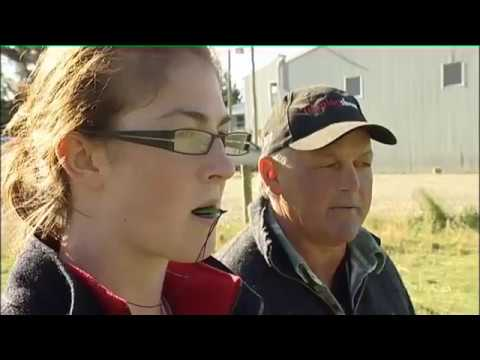 Working in New Zealand  17 - Sheep and Beef Farming, Plastering, Auto Engineering - JTJS2 EP 7