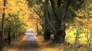 Watch Cheryl Wheeler When Fall Comes To New England video