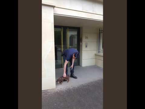 A friendly Parisian policeman greets a friendly dachshund :-)