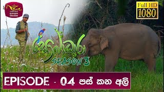 Sobadhara - Sri Lanka Wildlife Documentary | 2019-03-22 | Elephant in Sri Lanka Thumbnail