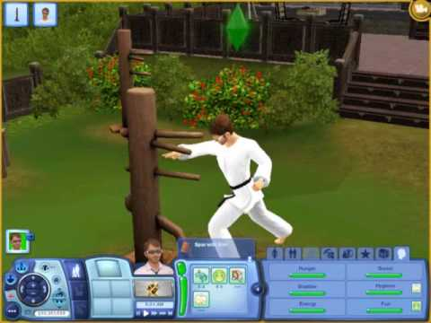 Sims 3- Earning Final Belt In Martial Arts
