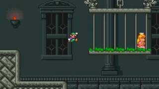 SMB Blooper ! - Luigi ne veut pas sauver la princesse !!