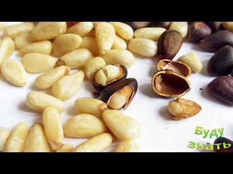 Как правильно чистить кедровые орехи