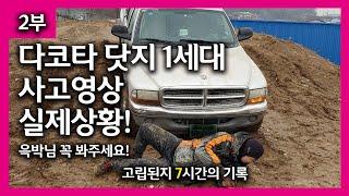 다코타 닷지1세대 사고영상(윽박말고 진박) 픽업트럭