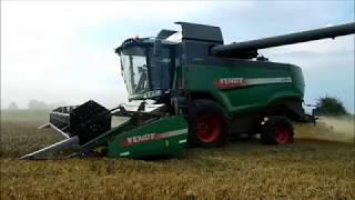 Żniwa pszenicy 2018 na dwa kombajny | 2x Fendt | 1x Massey Ferguson | 1x John Deere |