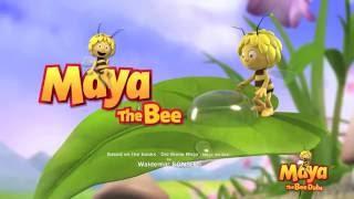 Turkish/türkçe: işte bir arı maya