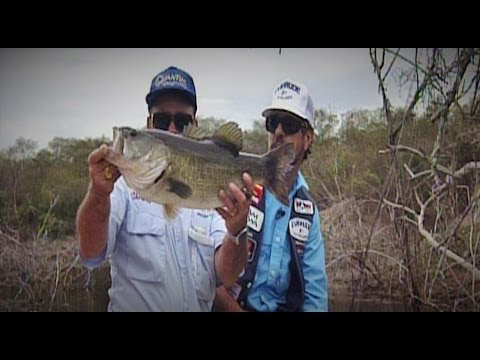 Trophy Bass fishing at Lake la Salto with bass Master Champi