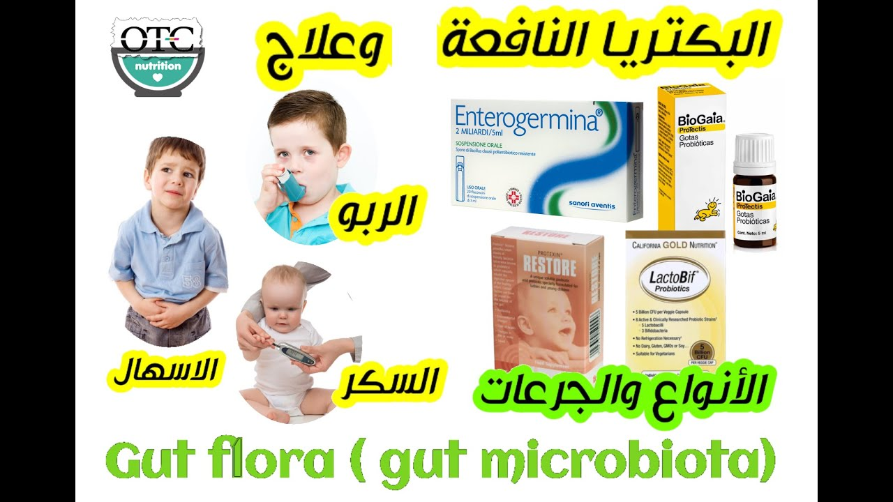 Probiotic البكتريا النافعة مرض السكر الاسهال عند الاطفال تليف الكبد الربو المزمن Youtube