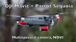 DJI Mavic with parrot sequoia, multispectral camera, NDVI