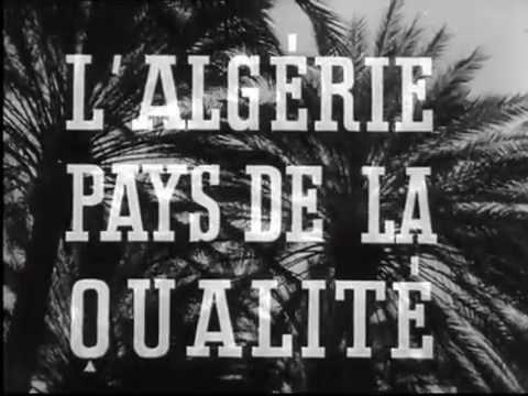 Exportation des fruits et légumes en Algérie (1948)