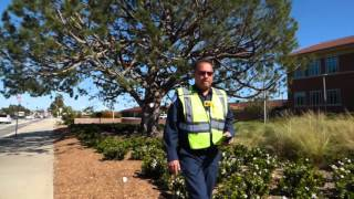 1st amendment audit Phillips 66 oil refinery , Wilmington CA  security guard fail no police