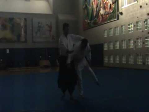Aikido and Physics