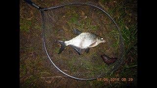 Ловля на фидер на можайском водохранилище