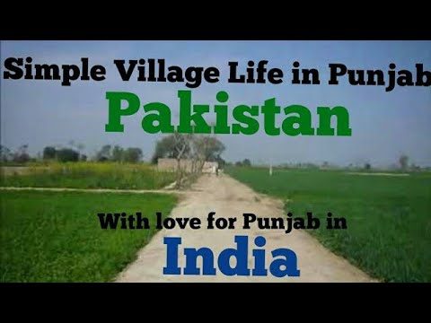 Simple Village Life in Punjab, Pakistan