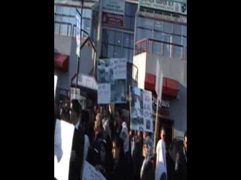 Protest at Stephen Harpers Calgary office for Gaza - Part 1