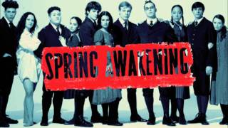 Watch Spring Awakening The Song Of Purple Summer video
