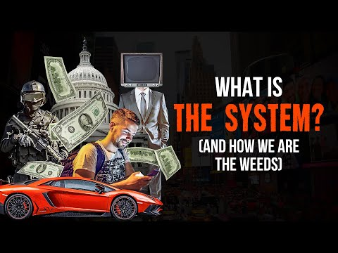 What Is The System? (And How WE Are The Weeds)