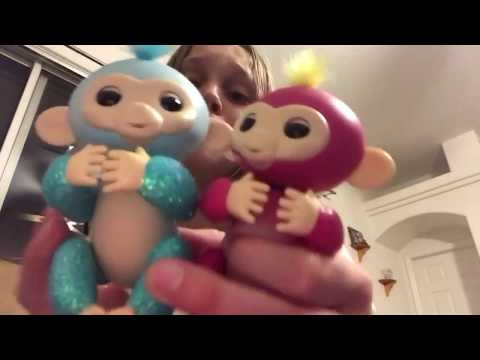 Cool things your fingerlings can do