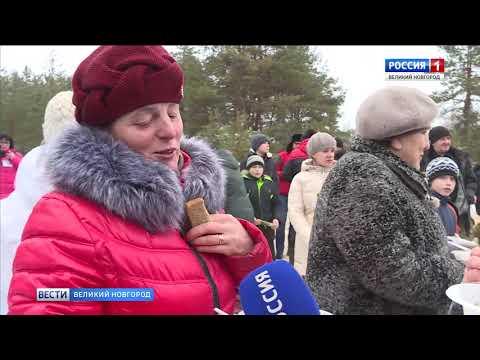 ГТРК СЛАВИЯ Вести Великий Новгород 25 02 19