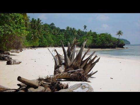 Maratua - Tauchabenteuer in Indonesien