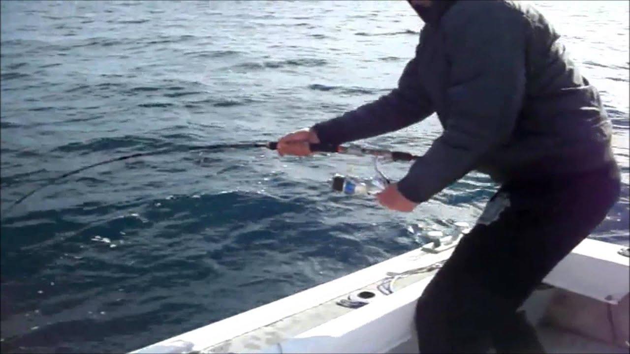 Big game fishing in croatia 39 39 artena 39 39 catching the for Fishing in croatia
