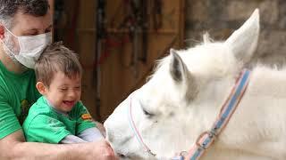 Crianças com Síndrome de Down esperam doação para equoterapia
