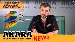 Новини компанії AKARA. Балансир AKARA Tensai можна придбати трьох нових кольорах.