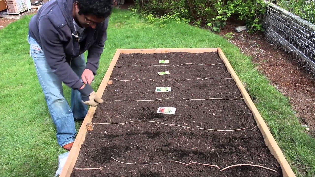 Building a raised-bed garden — Planting the seeds - YouTube
