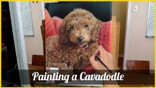 Painting a Cavadoodle in Oil (Poppy)