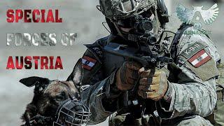 Спецназ Австрии  Special forces of Austria  Spezialeinheiten Österreichs