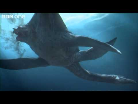 Predator X - Planet Dinosaur - Episode 4 - BBC One