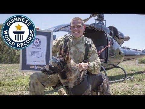 Arrow, the dog who skydives to save wildlife – Guinness World Records
