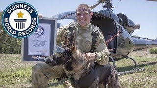 Arrow, the dog who skydives to save wildlife - Guinness World Records